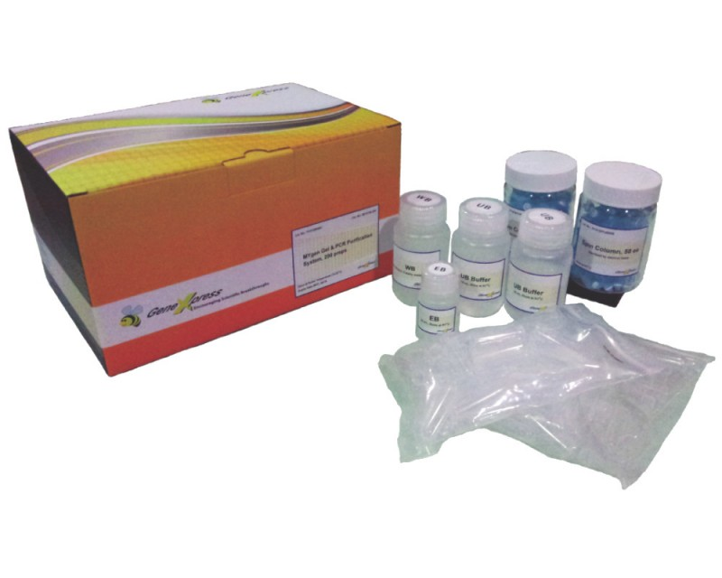 Mygene Gel & PCR Purification System